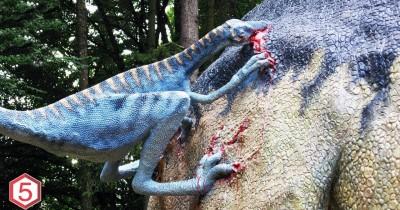 17 Fakta Dinosaurus yang Telah Ditemukan Sebagai Penyebab Kepunahannya