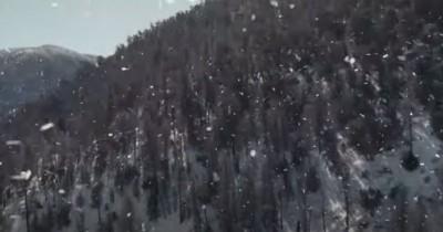 Sinopsis Film Forget Everything and Run (2021): Ketika Virus Menular Menyebar