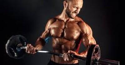 Cara Membentuk Otot untuk Pemula secara Efektif, Dasar yang Jarang Diketahui