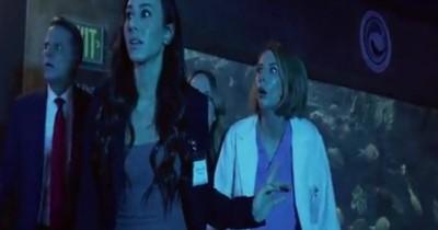 Sinopsis Film: Aquarium of The Dead (2021) - Hewan Air jadi Zombie